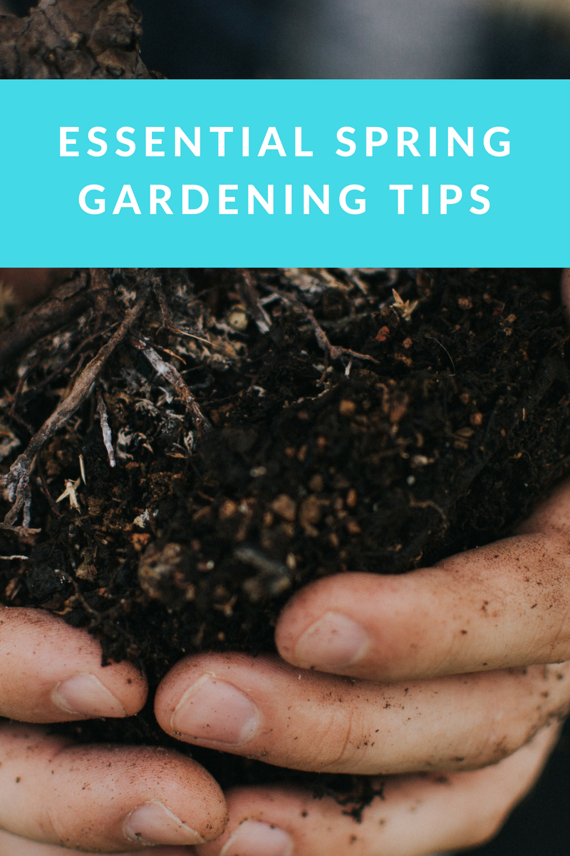 Show your garden some TLC with these essential gardening tips.