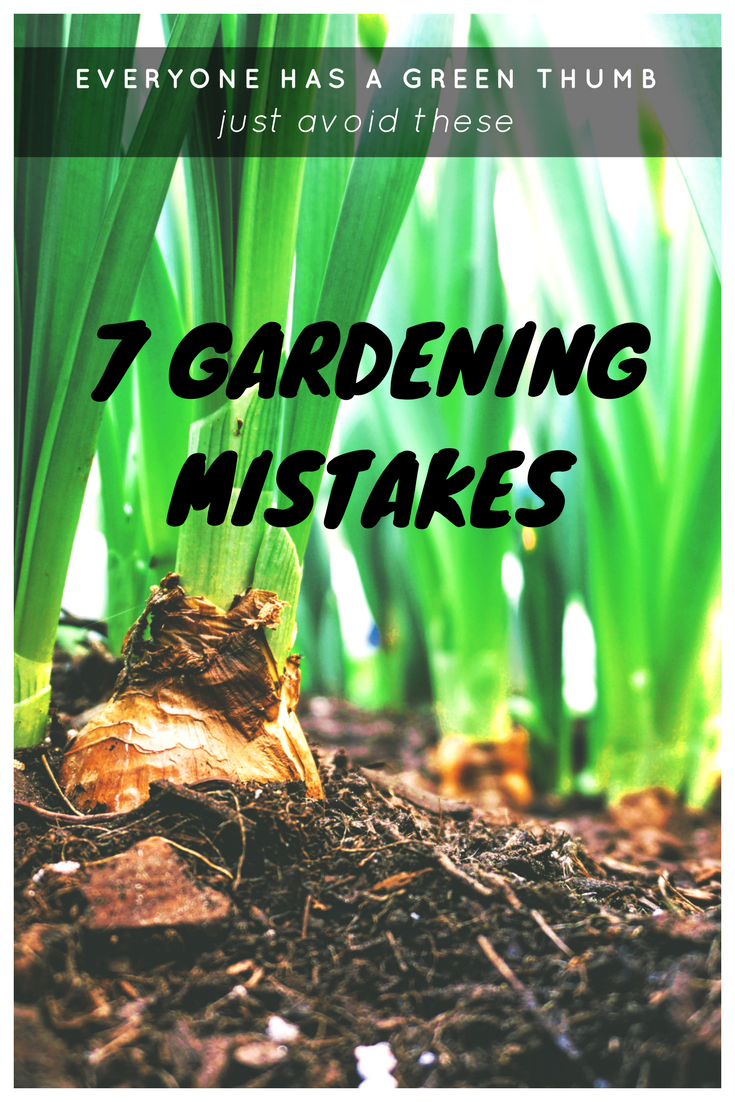 Everyone has a green thumb. They just need to avoid these seven gardening mistakes.