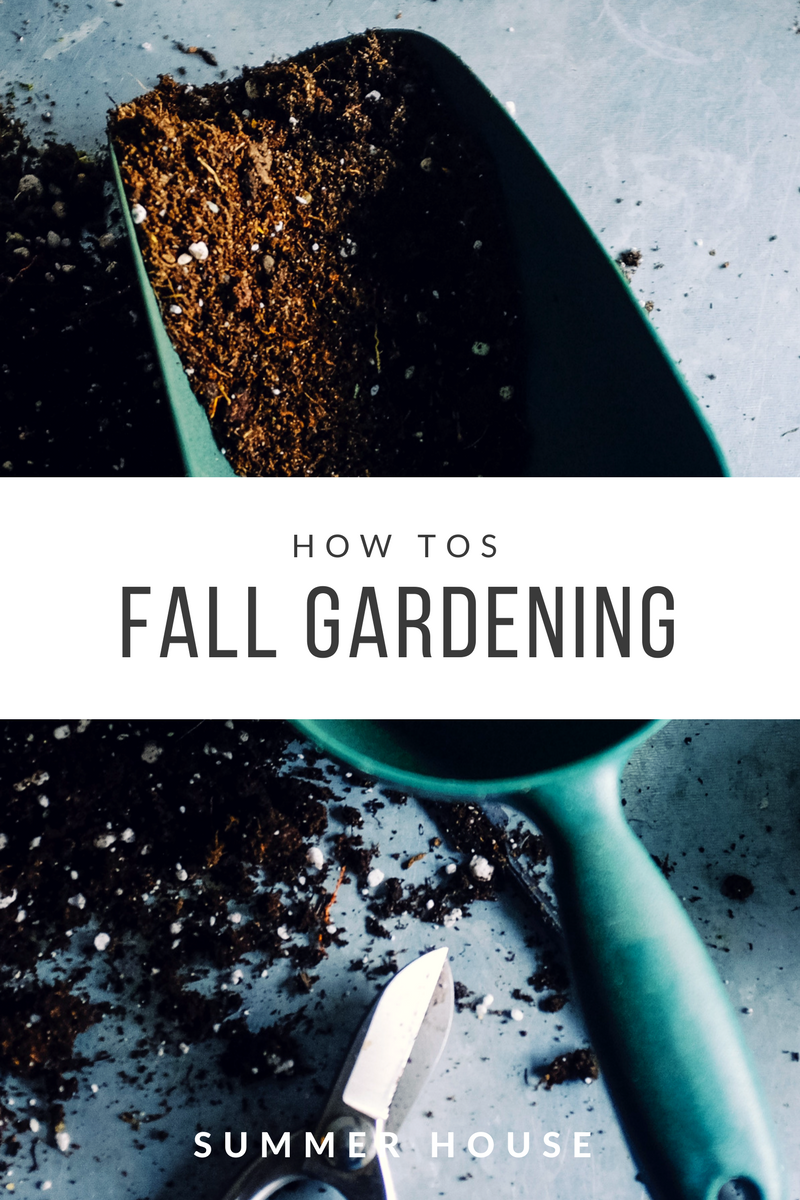 From fresh air and low-impact exercise to the delight of watching something you're tending grow, gardening can be incredibly rewarding. It can add color to your outdoor living space. And, it can help you create a quiet refuge just for you. Use these tips to get the most out of your garden this fall.